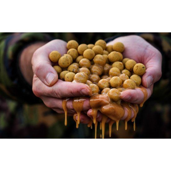 CC Moore Live System Shelf Life Boilies 10mm