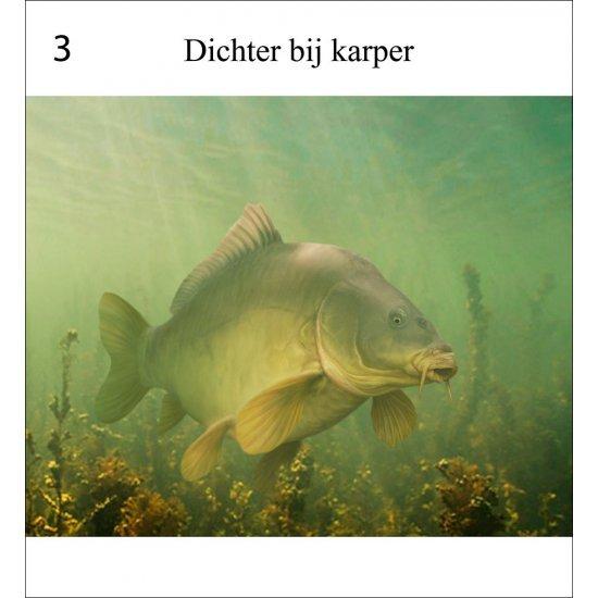 Rob Schneider Karper in zicht